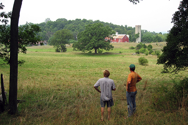 People overlooking field