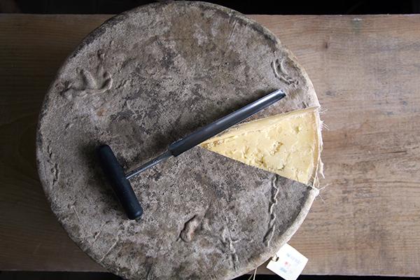 Cheese round