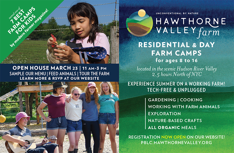 Summer Camp Ad with info on our 2019 offerings and Open House details