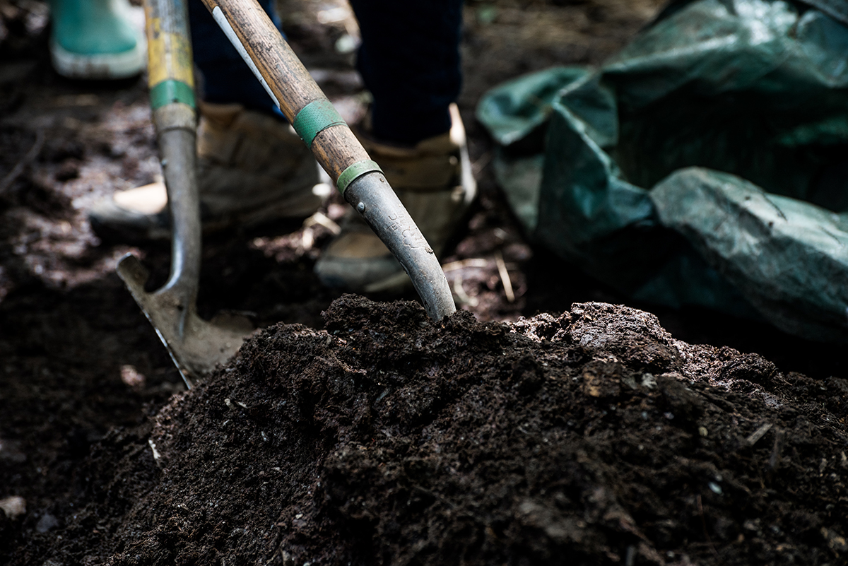 shovels in the rich soil of the farm's compost