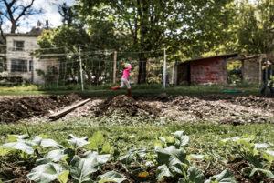 student running past the Hawthorne Valley Farm Children's Garden
