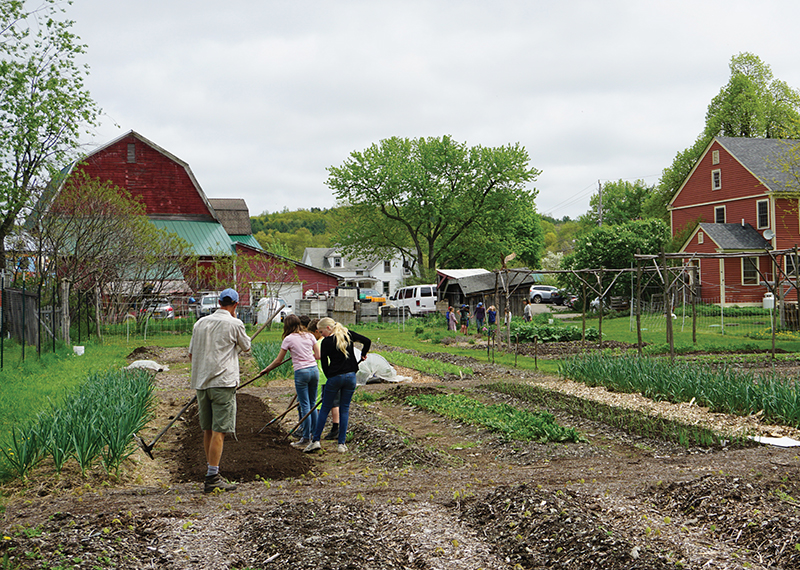 Middle School Students work in the teaching garden