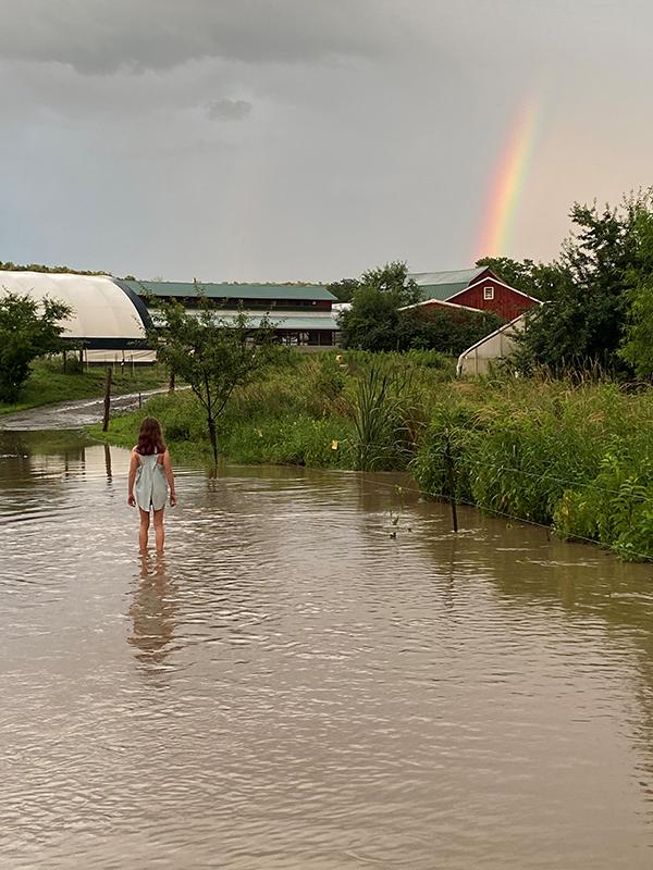 flooded stream at Hawthorne Valley Farm